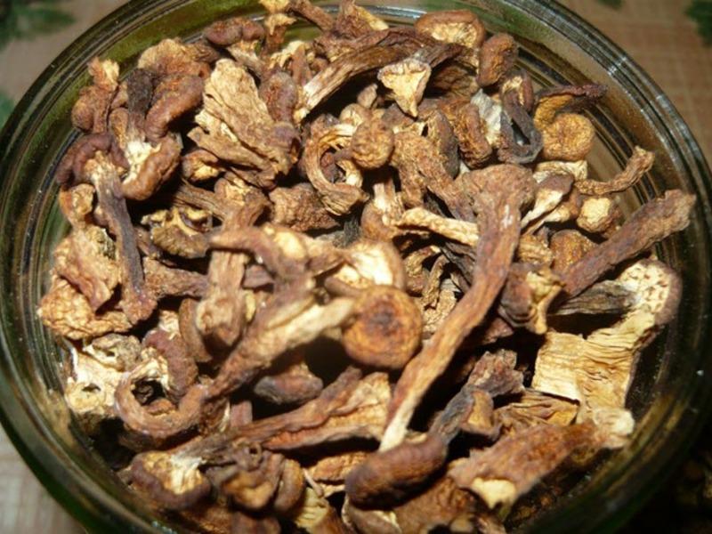 сколько замачивать грибы перед жаркой