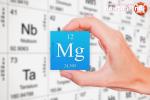 Зачем пить магний – Химический элемент магний: польза элемента в организме. Недостаток и избыток магния в организме: способен ли он наносить вред? — Женское мнение