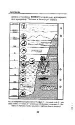 Озоновый экран земли это – 8. Биосфера и Космос. Экологическое значение их взаимодействия. Космическое излучение. Магнитное поле Земли. Озоновый экран